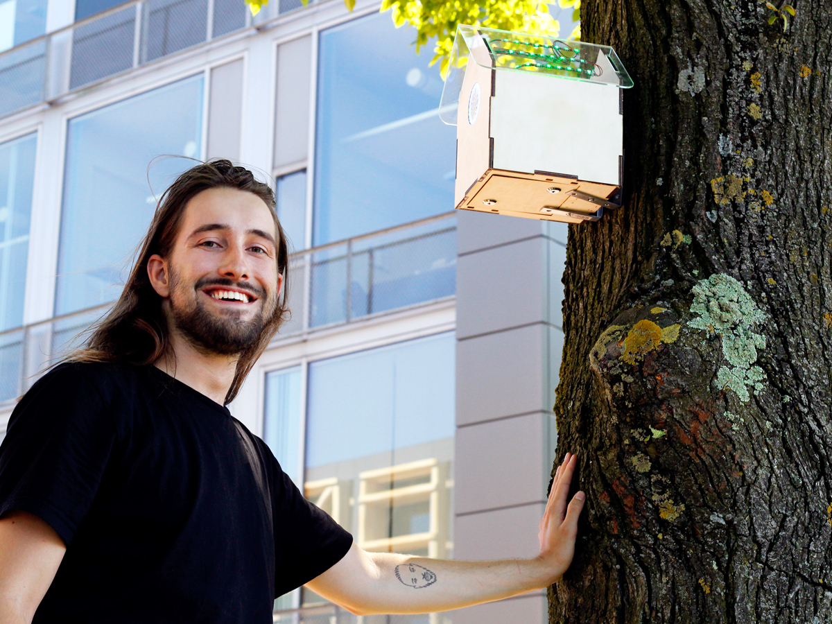 tree-wifi-prototype